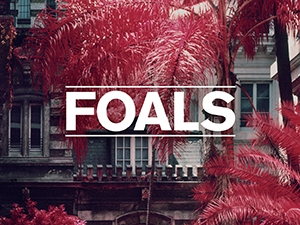 Foals-events.jpg